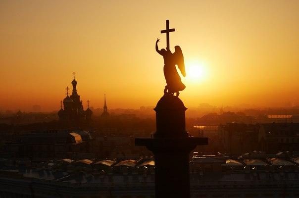 Сапсан Санкт-Петербург ➡️ Москва. (Вид из окна)